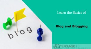 learn-the-basics-of-blog-and-blogging